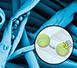 Curs online sobre microcàpsules